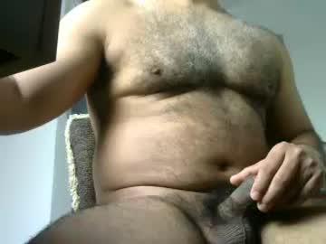littlebear40